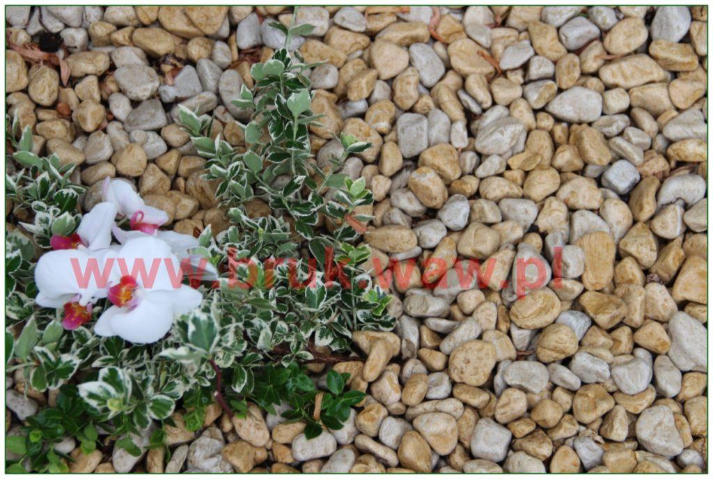 kamienie-w-ogrodzie_32
