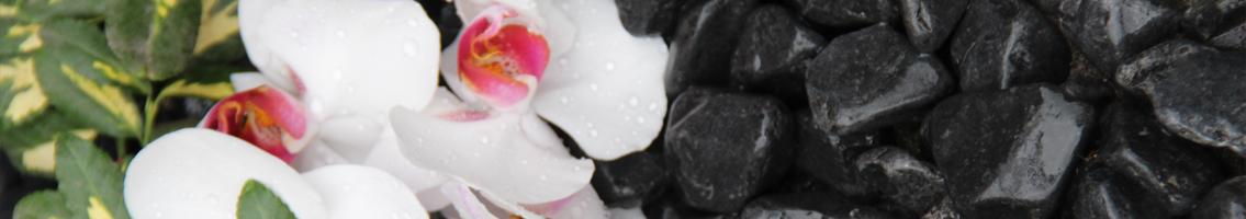 Kamienie w ogrodzie - Układanie kostki brukowej